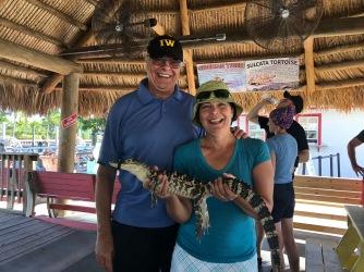 glades gator2